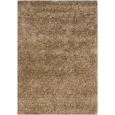 Caprice Brown Area Rug Rug Size: 3'11