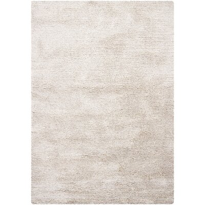 Bianca Ivory Area Rug Rug Size: 67 x 96