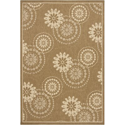 Ryan Brown Indoor/Outdoor Area Rug Rug Size: 5 x 8