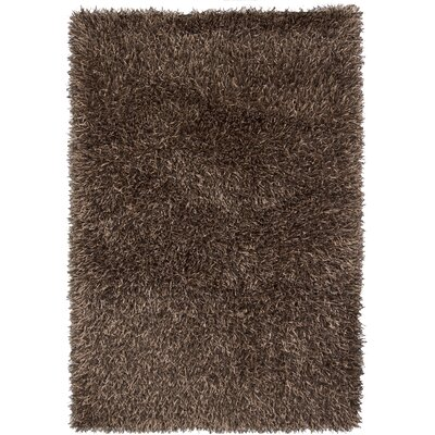 Phair Charcoal Area Rug Rug Size: 5 x 76