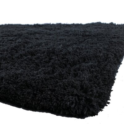 Brule Black Area Rug Rug Size: Rectangle 9 x 13
