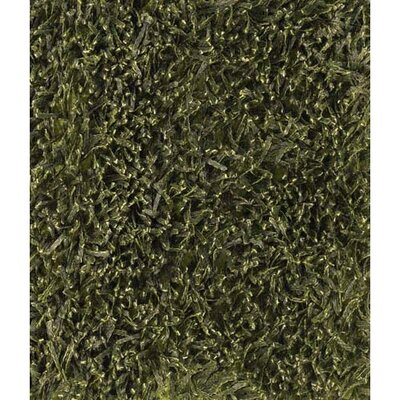 Tyronn Green Area Rug Rug Size: Rectangle 5 x 76