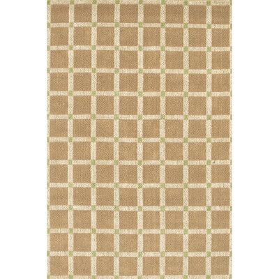 Art Brown/Green Area Rug Rug Size: 5 x 76