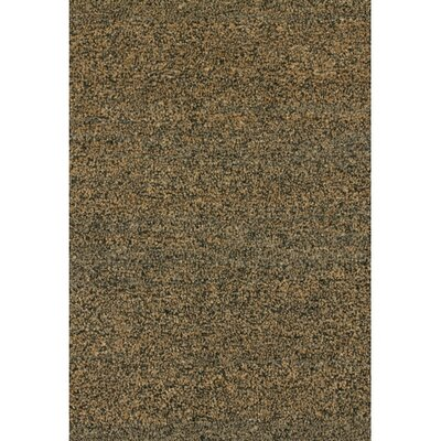 Fayean Brown/Tan Solid Area Rug Rug Size: Rectangle 2 x 3