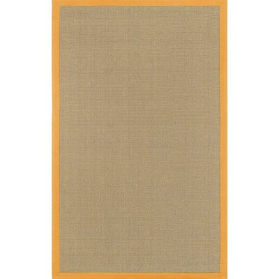 Bay Orange/Tan Area Rug Rug Size: Square 8
