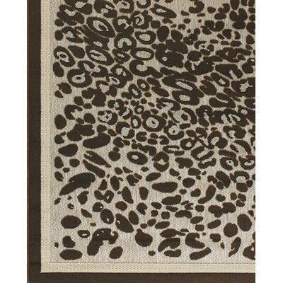 Calcutta Brown/Tan Indoor/Outdoor Area Rug Rug Size: 111 x 37