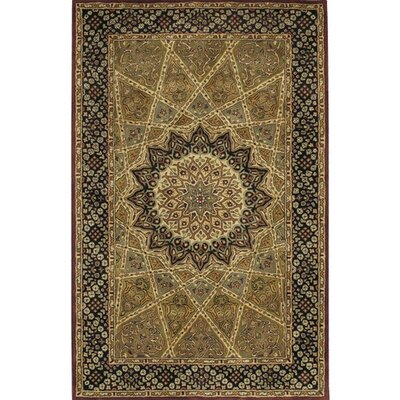 Castlewood Brown Area Rug Rug Size: Rectangle 2 x 3