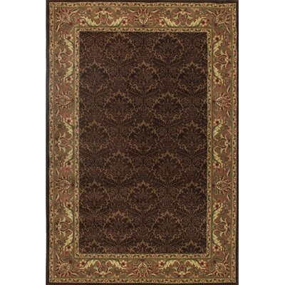 Trayner Brown/Tan Rug Rug Size: 52 x 77