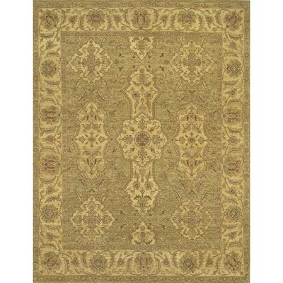 Zambrano Hand Woven Area Rug Rug Size: Rectangle 6 x 9