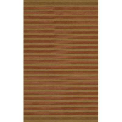 Kilim Rug Rug Size: 36 x 56
