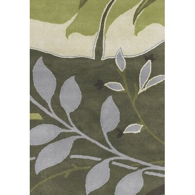 Kronos Green Area Rug Rug Size: 79 x 106