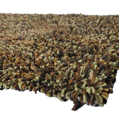 Salzer Brown Area Rug Rug Size: 5 x 76