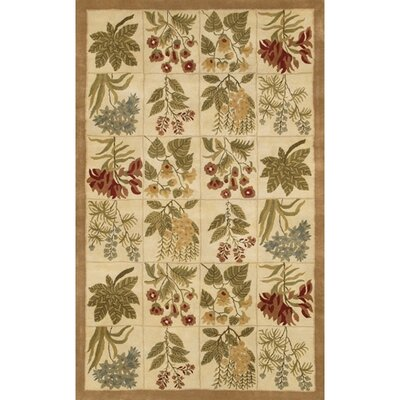 Chastain Beige Area Rug Rug Size: 2' x 3'