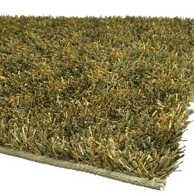 Sani Green/Yellow Area Rug Rug Size: Runner 26 x 76