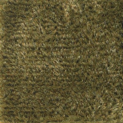 Seschat Green Area Rug Rug Size: 79 x 106