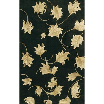 Vanallen Black Area Rug Rug Size: Rectangle 2 x 3