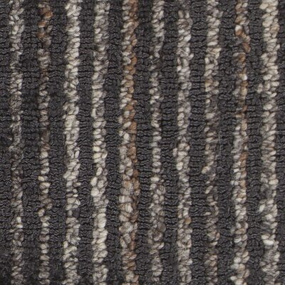 Evodio Textured Contemporary Charcoal Area Rug Rug Size: 5 x 76