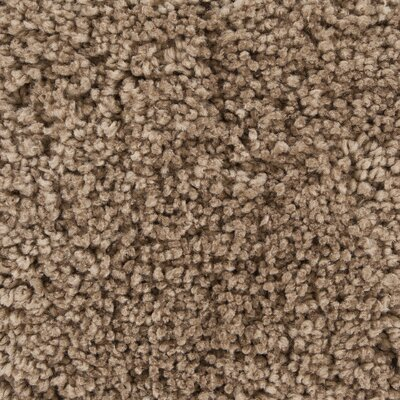 Debbie Textured Contemporary Shag Brown Wool Area Rug Rug Size: 79 x 106