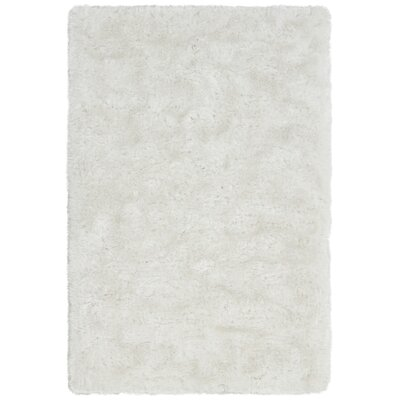 Joellen Textured Contemporary Shag Ivory Area Rug