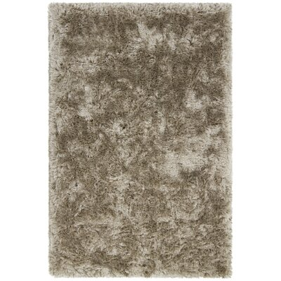 Joellen Textured Contemporary Shag Tan Area Rug