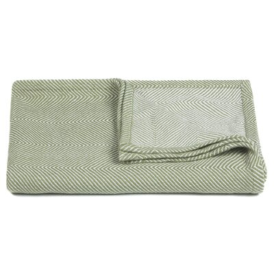 Ella Handcrafted Cotton Throw Color: Green / White