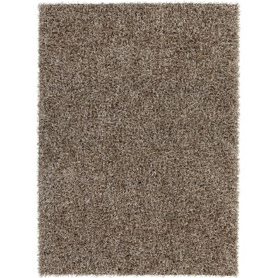 Blossom Textured Shag Taupe Area Rug Rug Size: 9 x 13