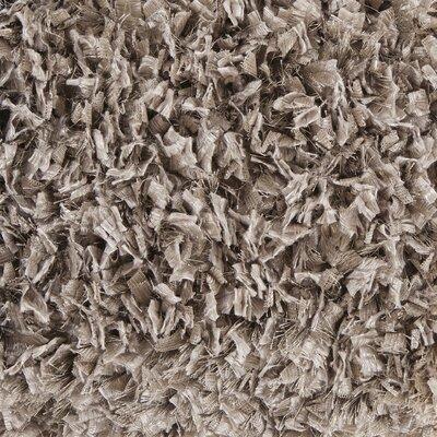 Jolynn Textured Contemporary Shag Beige Area Rug Rug Size: 5 x 76
