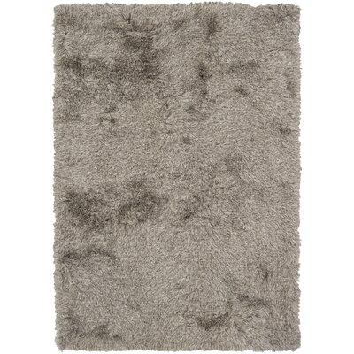 Vani Gray Area Rug Rug Size: 5 x 76
