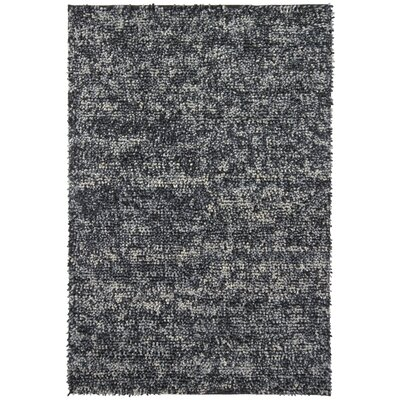 Brule Hand Woven Wool Black Area Rug Rug Size: Rectangle 9 x 13