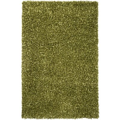 Benson Modern Green Solid Area Rug Rug Size: 79 x 106