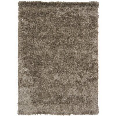 Dior Brown Area Rug Rug Size: 9 x 13