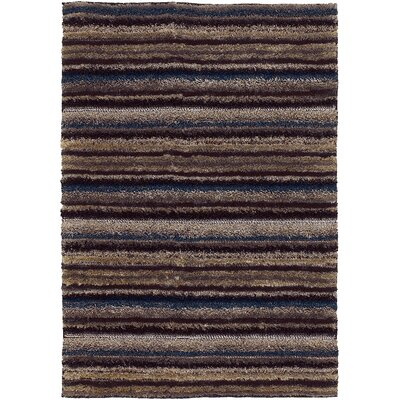 Delight Stripe Rug Rug Size: 2 x 3