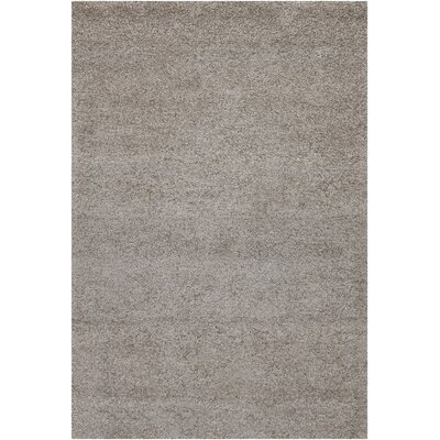 Kadiri Gray Outdoor Area Rug Rug Size: 2 x 3