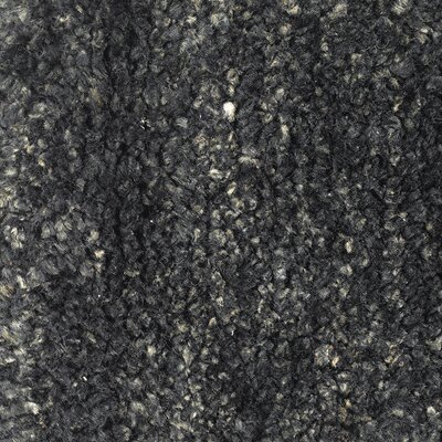 Petersham Black Area Rug Rug Size: Runner 26 x 76