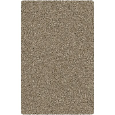 Zara Dark Copper Area Rug Rug Size: 79 x 106