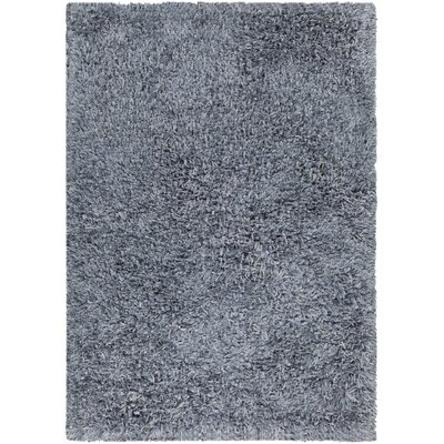 Funkhouser Hand-Woven Gray Area Rug Rug Size: 5 x 76