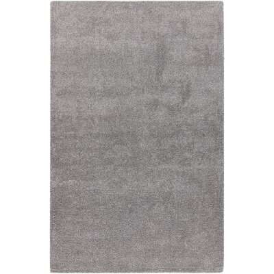 Alcon Hand-Woven Silver Area Rug Rug Size: 79 x 106
