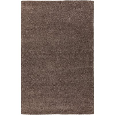 Alcon Hand-Woven Brown Area Rug Rug Size: 79 x 106