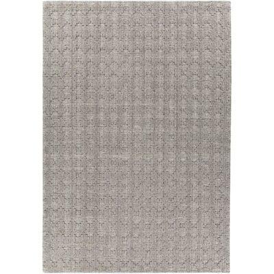 Tenleytown Hand-Woven Gray Area Rug Rug Size: 5 x 76