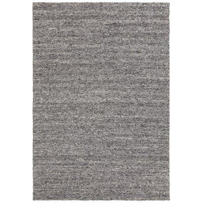 Saira Hand-Woven Gray Area Rug Rug Size: 5 x 76