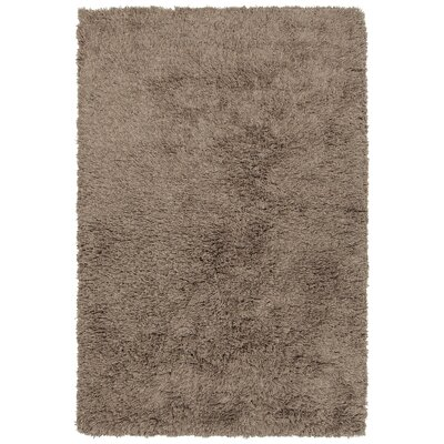 Terrel Hand-Woven Taupe Area Rug Rug Size: 79 x 106