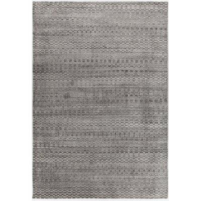 Hernan Hand-Woven Gray Area Rug Rug Size: 5 x 76