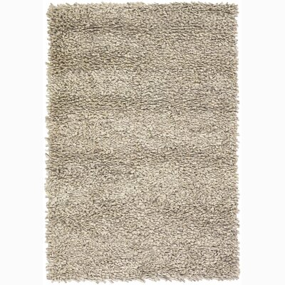 Stiefel Tan Area Rug Rug Size: Rectangle 2 x 3