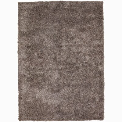 Lively Gray Area Rug Rug Size: Rectangle 5 x 76