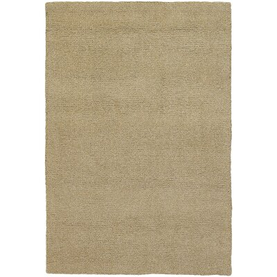 Barnaby Taupe Rug Rug Size: Rectangle 16 x 23