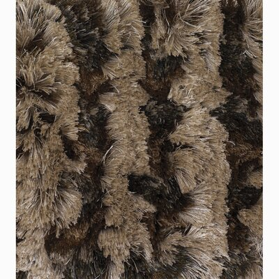 Avina Rug Rug Size: Rectangle 2 x 3