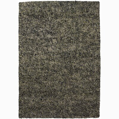 Buss Gray Area Rug Rug Size: Rectangle 5 x 76