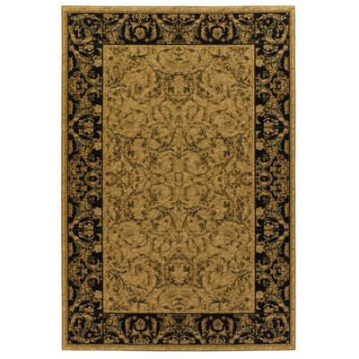 Bethea Brown/Black Rug Rug Size: 5 x 8