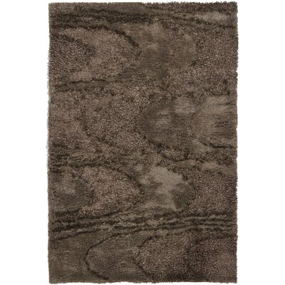 Isidore Shag Brown Area Rug Rug Size: Rectangle 5 x 76