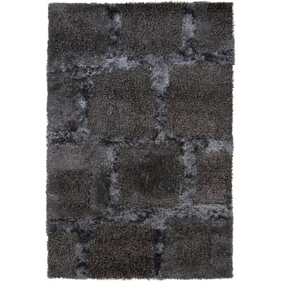 Taiquita Shag Black Area Rug Rug Size: Rectangle 79 x 106